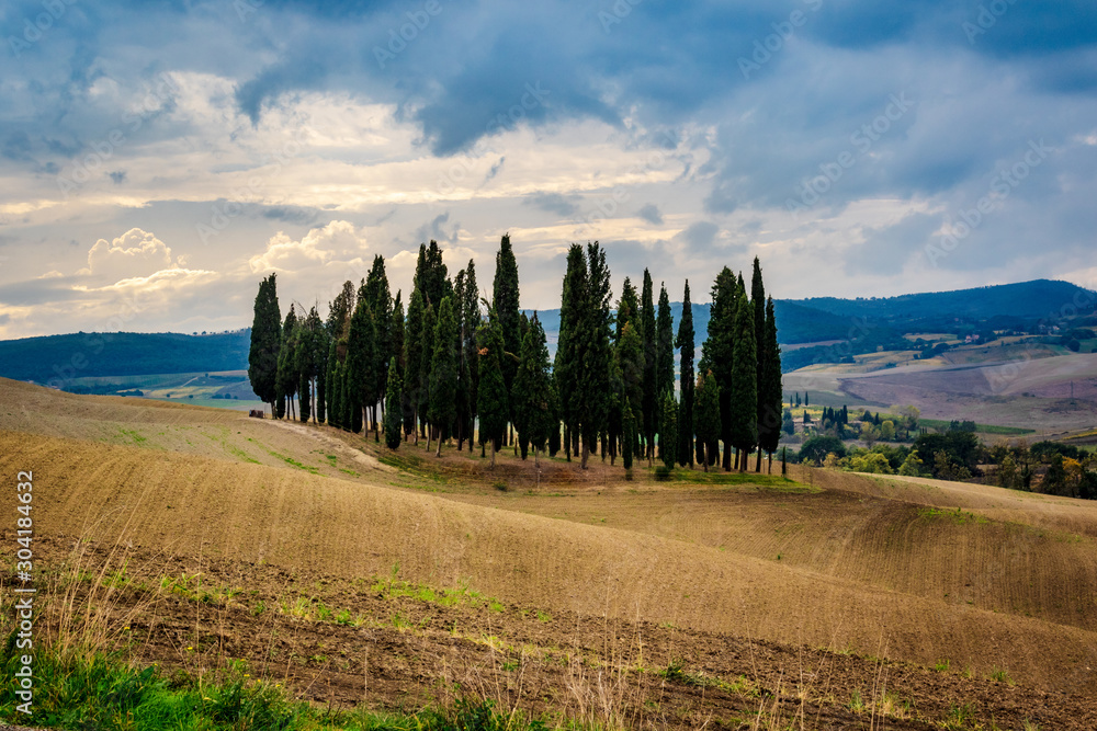 Val d'Orcia - Tuscany landscape with cypress