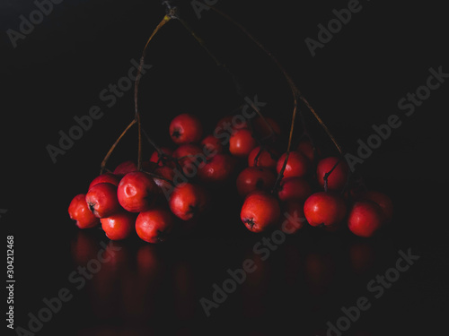 Photo rowan berries isolated on a black background