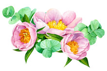 Peonies And Eucalyptus On A Wh...