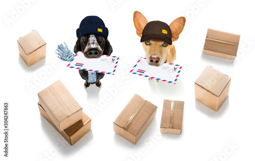 Foto op Canvas Crazy dog dog mail deliver postal post man