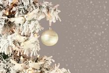 Decoration On Christmas Tree -...