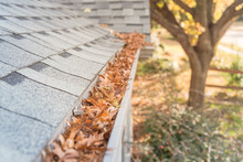 Clogged Gutter At Front Yard N...