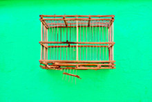 An Empty Bird Cage On A Green ...