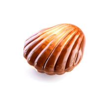 Belgian Seashell Traditional Chocolate Candy Close-up Isolated On White Background