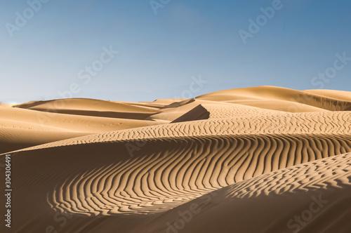Sand dunes in the desert Wallpaper Mural
