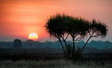 Landscapes Of Kakadu, Northern...