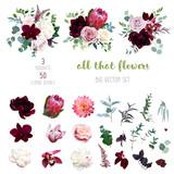 Fototapeta Kwiaty - Dusty pink and creamy rose, coral dahlia, burgundy and white peony flowers