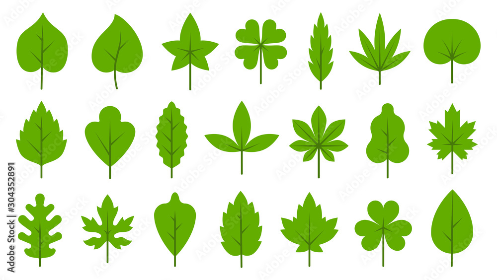 Fototapety, obrazy: Green leaves flat Bio Organic Eco leaf icon set