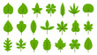 Green leaves flat Bio Organic Eco leaf icon set