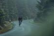 Rennradfahrer im Herbst bei Nebel auf eine Landstraße im Wald
