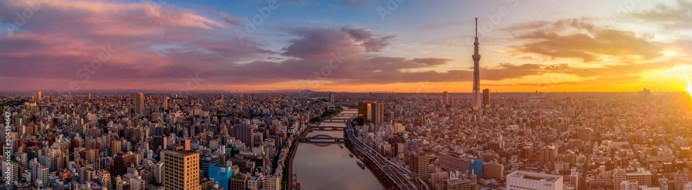 Fototapety, obrazy: Aerial shot of Tokyo skyline at dawn, Japan