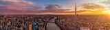 Aerial shot of Tokyo skyline at dawn, Japan