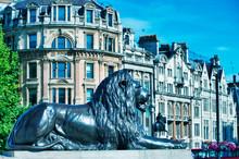 The Lion Of Trafalgar Square W...