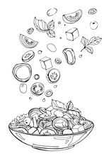 Hand Drawn Sketch Of Fresh Salad With Greens, Olives, Cherry Tomatoes, Onions, Cheese And Cucumber. Organic Food. Vector Illustration On White Background.