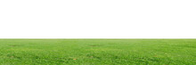 Green Grass Field Isolated On ...
