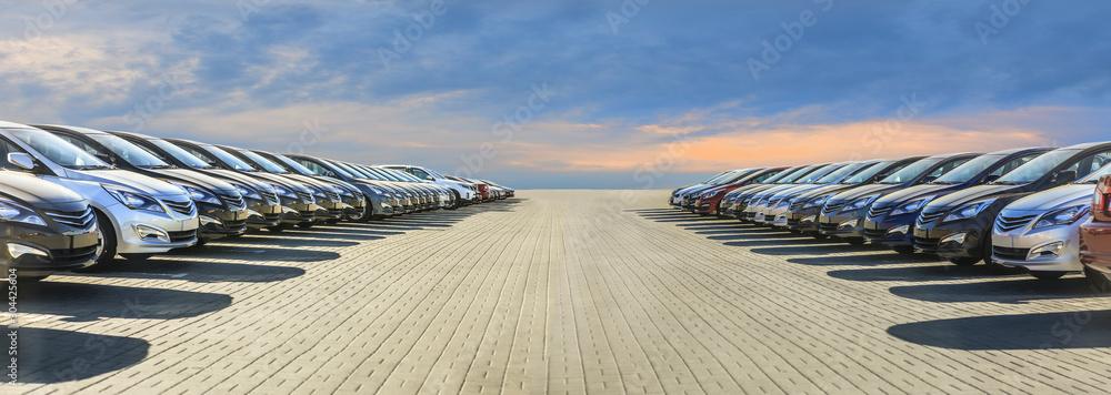 Fototapeta Cars For Sale Stock Lot Row.
