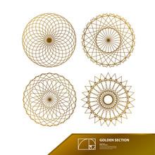 Golden Ratio For Creative Design Vector Illustration.