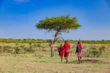 Bush Walk With Masaais In Masai Mara