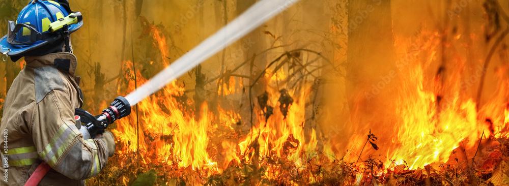 Fototapeta Australia bushfires, The fire is fueled by wind and heat.