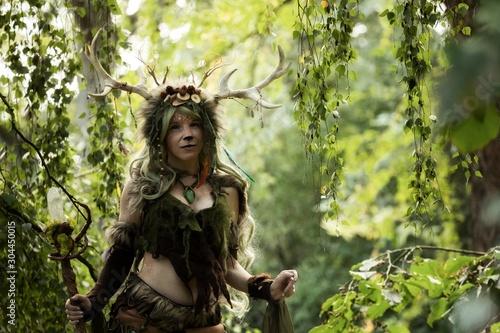 Fotografie, Obraz Spirit of the forest inside the woods