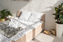 Interior Of Bedroom With Plants And Sunlight