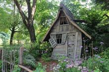 Vieille Cabane De Sorcière Dans Les Bois