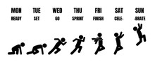 Weekly Working Life Cycle Evol...