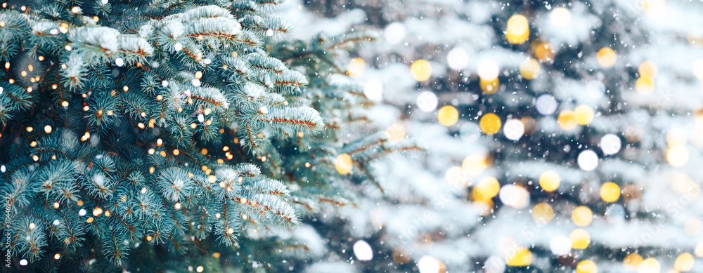 Fototapety, obrazy: Christmas tree outdoor with snow, lights bokeh around, and snow falling, Christmas atmosphere.