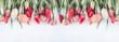 Beautiful multicolored tulips on the white wooden background. Copy space, flat lay