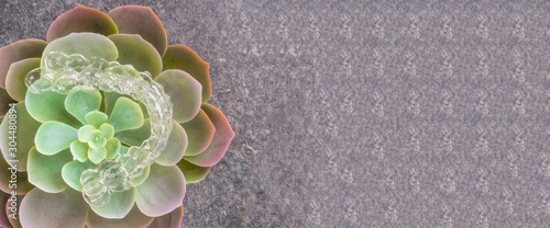 Invisible aligner and decorative flower on grey background copy space Canvas Print