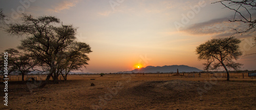 Fotografie, Obraz Weites Grasland im Sonnenuntergang mit Termitenhügel in Namibia, Afrika