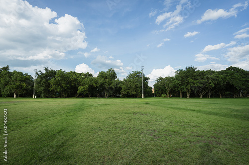 landscape of grass field and green environment public park use as natural backgr Slika na platnu