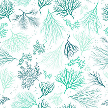 Beautiful Hand Drawn Corals Seamless Pattern, Underwater Background, Great For Textiles, Banner, Wallpapers, Wrapping - Vector Design