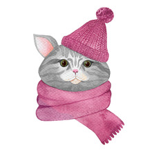 Grey Watercolor Cat In A Pink Hat And Scarf Isolated On A White Background. Hand Drawn Kitten In Knitted Clothes
