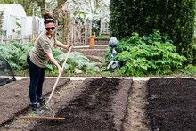 Woman Raking The Soil In Vegetable Garden
