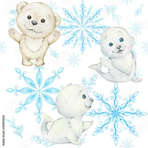 foki-i-niedzwiedz-polarny-platki-sniegu-polarny