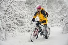 A Walk In Bicycle Snowfall