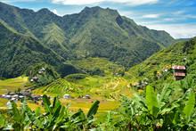 Rice Terraces In Batad In Ifug...