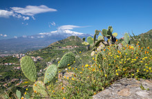 Taormina - The Path Among The ...