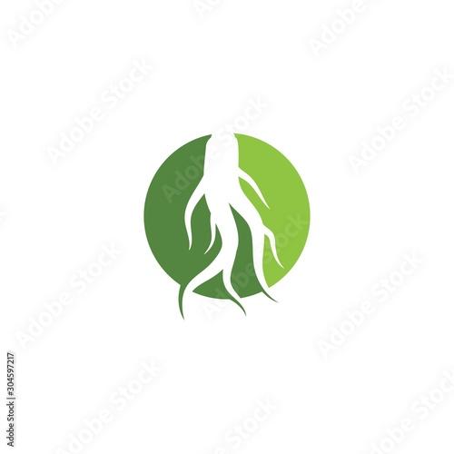 Ginseng logo Canvas Print