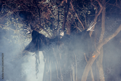 The angel of death ( Azrael)  at night lurking in a mystical Forrest Canvas Print