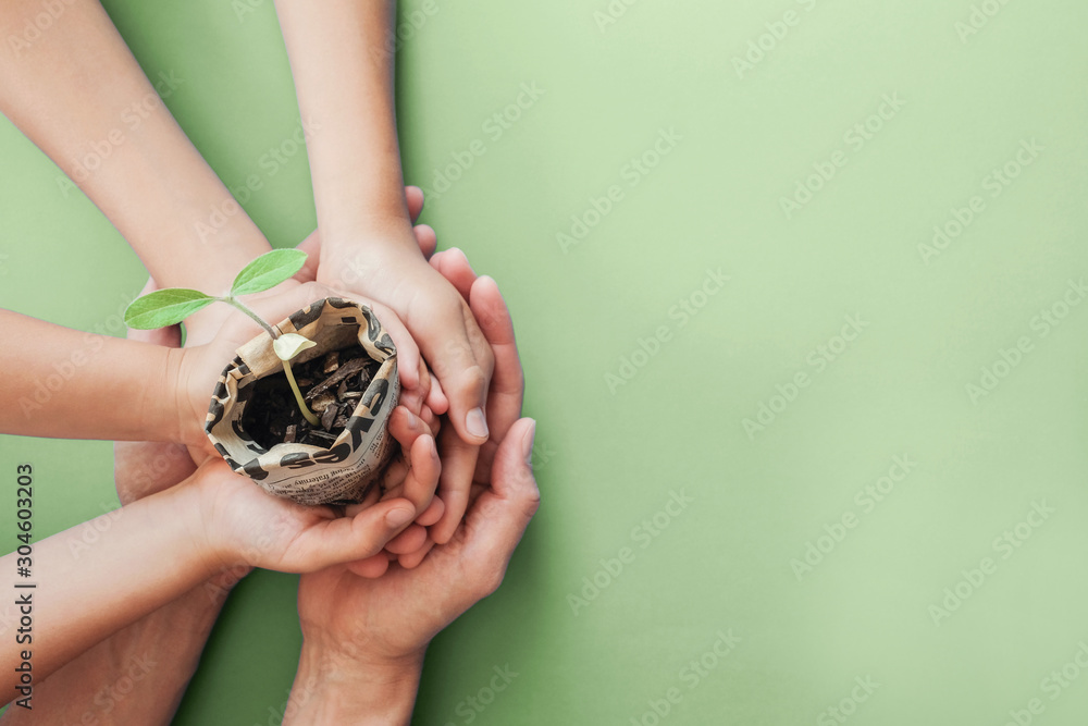 Fototapeta hands holding seedling plants in newspaper pot, montessori education , CSR  social responsibility, Eco green sustainable living, zero waste, plastic free, reponsible consumption, earth day concept
