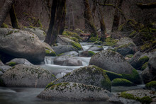Mossy River Rocks In The Forest