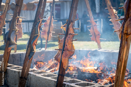 Salmon being  grilled over an open fire using a traditional native american tech Canvas Print