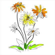 Vector Illustration Of A Beautiful Flower