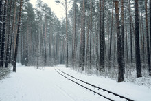 Railways Through Beautiful Winter Forest. Winter Lanscape With Heavy Snowfall.