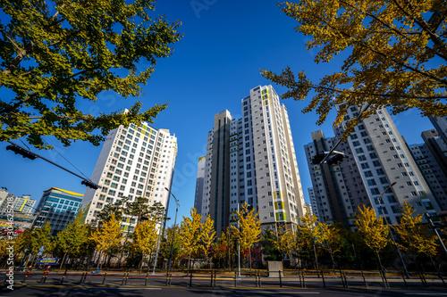DAEGU, SOUTH KOREA - NOVEMBER 04, 2019: Many high-rise apartments in Daegu, The Canvas Print