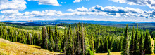 Panorama View From Mt. Washbur...