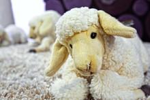 Lamb Plush Soft Toy. Close Up