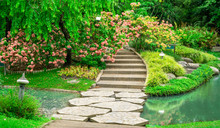 Colorful Dona Flower Plant, Shrub And Bush In A Good Care Maintenance Landscapes, Decorated With Free Form Grey Color Concrete Stepping Walkway  Cross The Water,lake In A Informal Garden